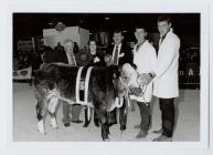 46. Young Farmers Club at the Winter Fair,...