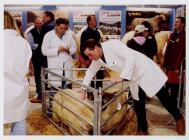 47. Young Farmers Club at the Winter Fair,...