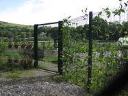 The Llangeinor community garden, summer 2013