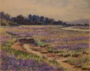 Sea Lavender, Beaulieu River - Haig, Charlotte...