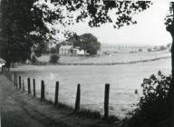 Dukes Meadow before the houses were built...