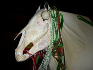 Mari Lwyd performed in Chepstow.