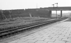 Welshpool Station, 1964/10/03