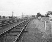 Distant View of Aberystwyth Coaling Stage, 9...