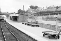 Newtown Station, Powys, 1966/06/20
