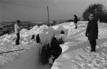 Winter January 1982