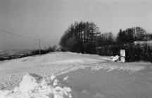 Heavy Snow, January 1982