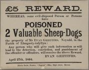 £5 Reward poster