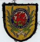 Welsh Games 1958 Badge