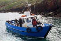 Dale Princess ferry boat arrives at Skokholm...