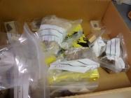 Specimen storage box, Oriel Ynys Môn