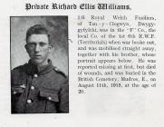Gallipoli - Private Richard Williams Died of...