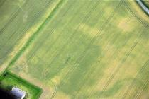 LANE FARM CROPMARKS