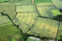 MONKS DITCH POSSIBLE WATER MEADOW CROPMARKS