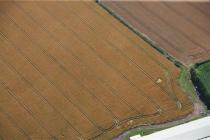 LLANCAYO FARM DEFENDED ENCLOSURE