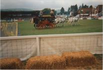 Ceredigion Pageant at the RWAS, 1995