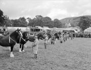 Jubilee Royal Welsh Show at Machynlleth