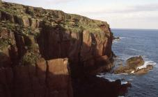 North coast, Skokholm Island 1982