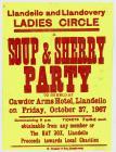 Llandeilo and Llandovery Ladies Circle Poster