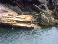 Skokholm - the landing - seals - 2009