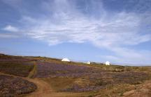 South valley, well area and buildings, Skokholm...
