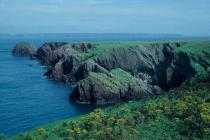 Skokholm - North Haven and the Stack in 1986