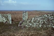 Skokholm old stone wall
