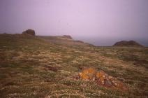 Bread Rock and Horse Bottom, Skokholm Island