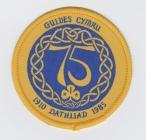 Guides Cymru 75th 1985 Anniversary Badge