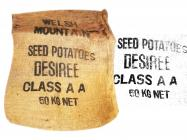 Welsh Mountain Seed Potatoes
