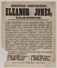 Deisyfiad Gostynedig Eleanor Jones LLannon c.1864