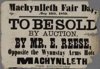 Machynlleth Fair Day 1879 To Be Sold by Auction