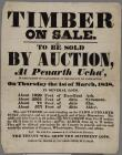 Timber on Sale to be sold by Auction 1838