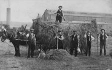 View of haymaking at Ynysywern Farm circa 1902-10