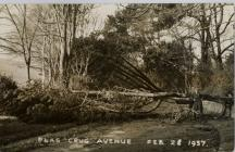 After storm, Plas Crug Avenue February 28th 1937