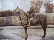 Neath Borough Police mounted officer