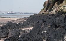 Heavy fuel oil on the cliffs at Pwllcrochan,...