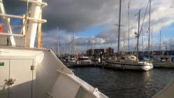 Milford Haven Marina 2015