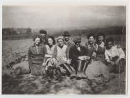 Blaenmaenog, Penboyr: potato harvesting, 1940