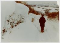 Heavy Snow 1982: Tom Lewis Jones, Dre-fach...
