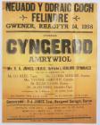 Poster yn hysbysebu Cyngerdd Amrywiol yn Neuadd...