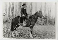 Horseman in the valley.