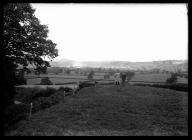 Offa's Dyke near Hope Farm