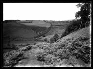 Offa's Dyke at Cwm Ffridd