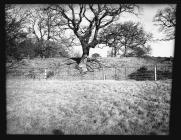 Offa's Dyke at Sedbury Park