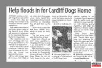 Clipping from page 3 of the South Wales Echo...