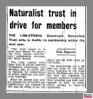 Newspaper clipping taken from page 3 of South...