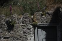 Bardsey Island: History/Archaeology