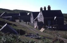 Bardsey Island: Mammal & History/Archaeology