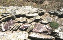Bardsey Island: Geology & History/Archaeology